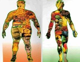 Dalla nutrizione adeguata alla nutrizione ottimale