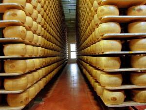 Stagionatura del Parmigiano