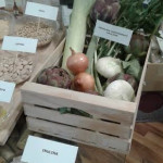 Inulina-vegetali-contenenti-inulina